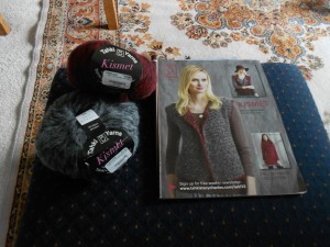 Interesting pattern, gorgeous yarn.